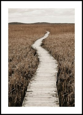 Winding Boardwalk Poster