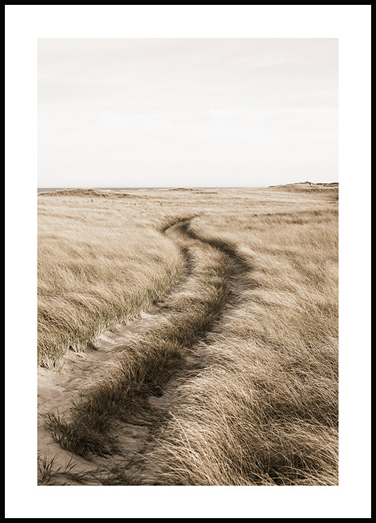 Path Through Field Poster